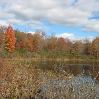 Spicer Lake in the Fall